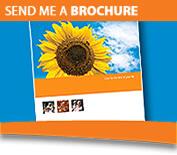 Send Me a Brochure