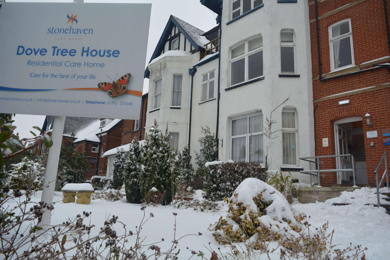 Dove Tree House - Snow