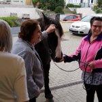 Little Blackie Horse Visit - Westward Ho!